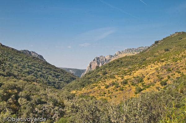 Vistas del Salto del Gitano. Monfragüe Rural. Parque Nacional de Monfragüe. Cáceres.